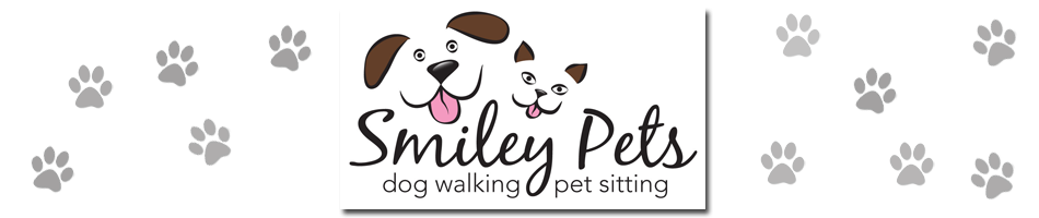 Smiley Pets - New York City